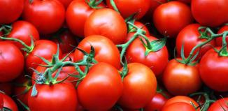 Растущие помидоры