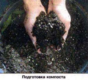 Подготовка компоста