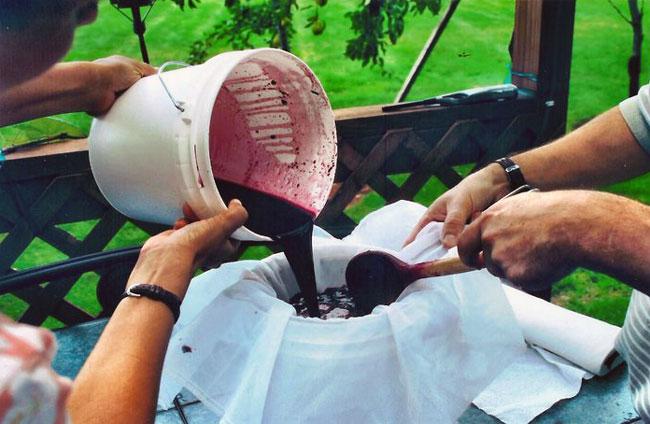 Как сделать виноградное домашнее вино фото 887