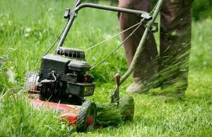 Как все таки выбрать газонокосилку