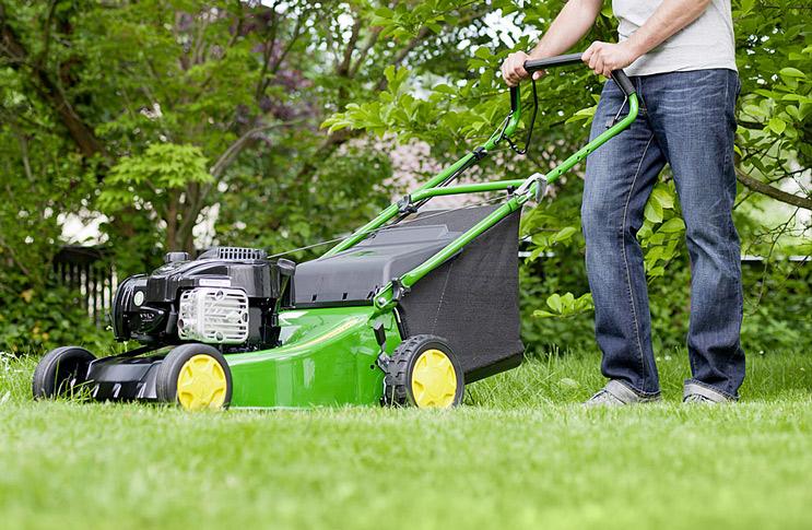 Виды, цены и особенности газонокосилок: как выбрать газонокосилку для дачи?