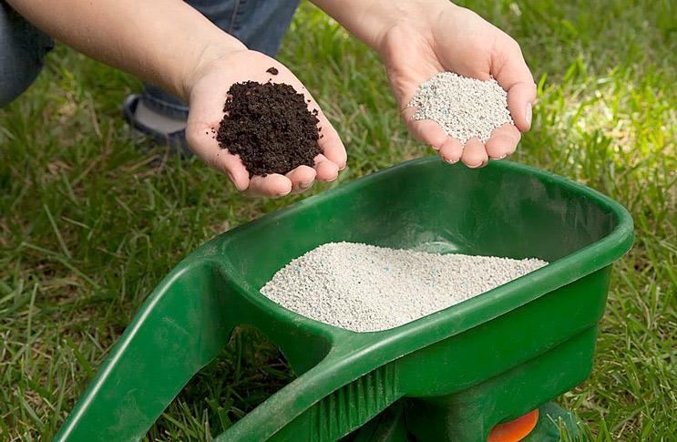 Удобрения для газона своими руками 68