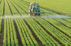 Обработка урожая