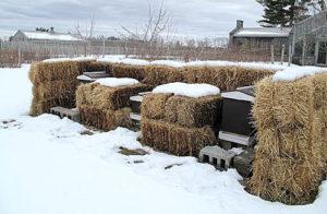 Утепление пчелиных ульев на зиму