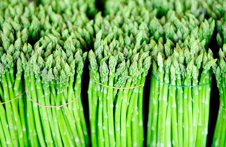 Спаржа - выращивание из семян