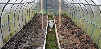Подготовка теплицы весной к посадке
