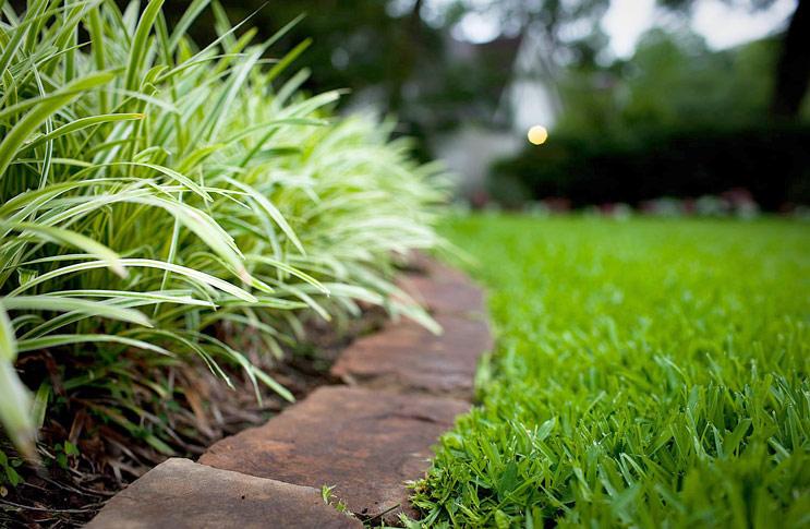 Как обустроить газон