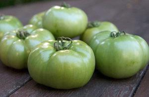 Научные соображения о созревании томатов