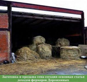 Основной доход - заготовка и продажа сена