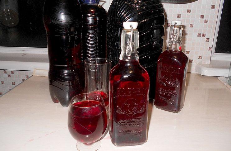 Изготовление вина домашних условиях винограда изабелла 485