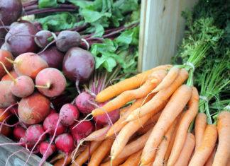 Как хранить урожай