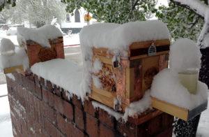 Зимовка на улице